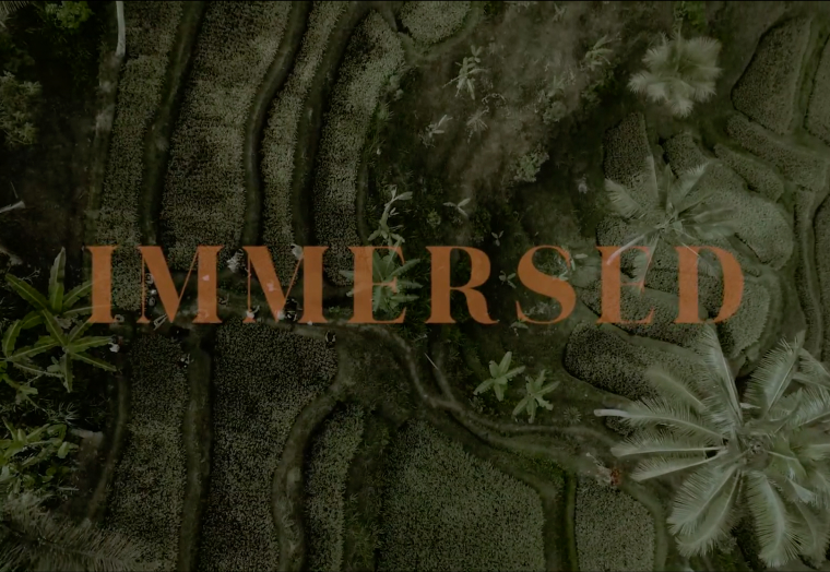 Immersed - Bali